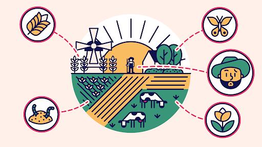 lokale voedselketen is goed voor alles